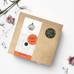 Valašské léto sypaný čaj bio